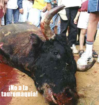 Tamaño 35.231 bytes Imagen del cadáver de un toro torturado hasta la muerte